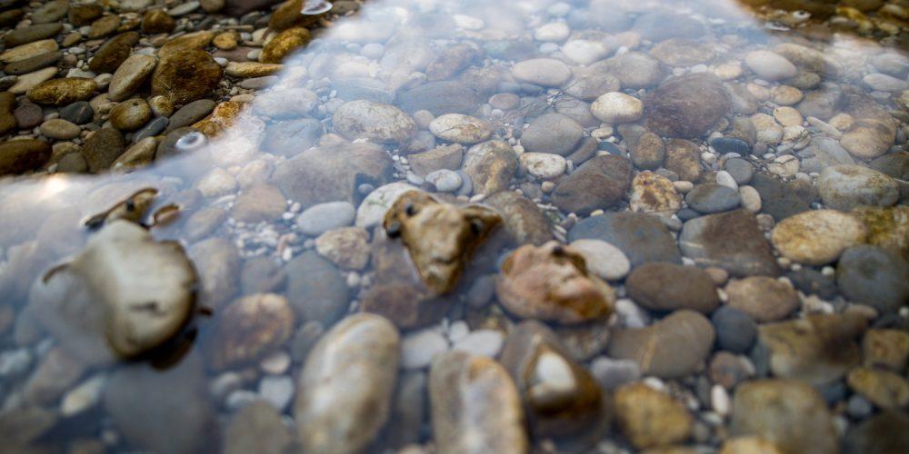 Zbiramo 40.000 podpisov v podporo referendumu Za pitno vodo